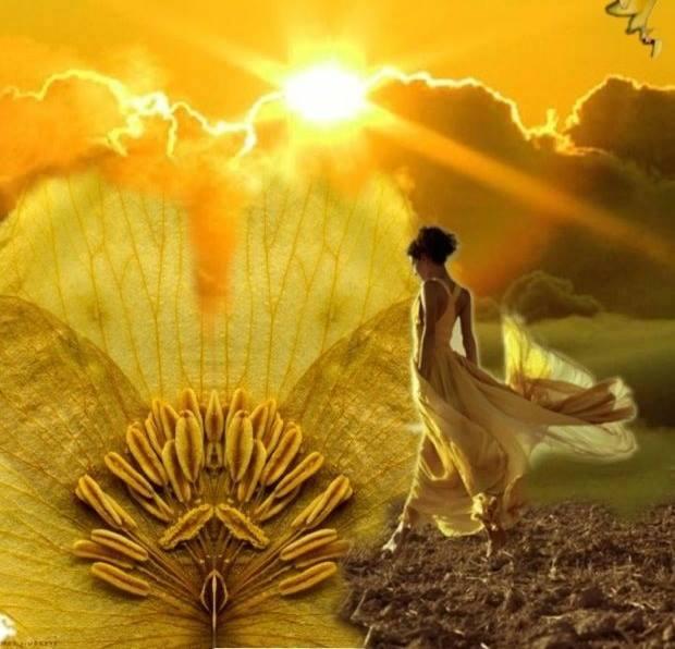 Abondance divine