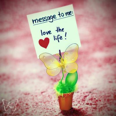 Aimer la vie