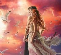 Amour couple oiseaux