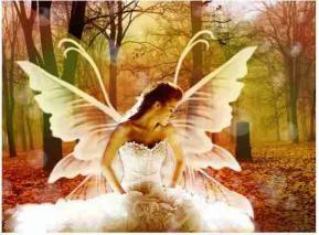 Ange papillon