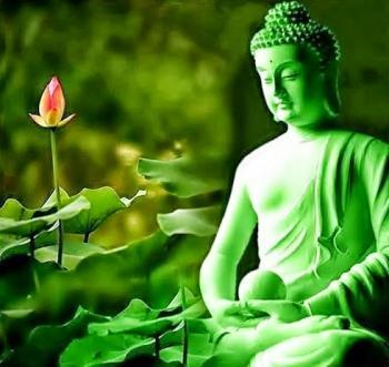 Bouddha fleur