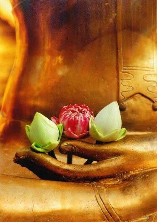 Bouddha fleurs