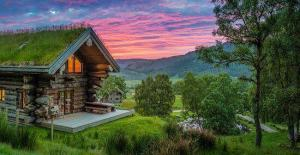 Cabane en nature