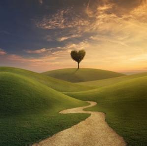 Chemin d amour