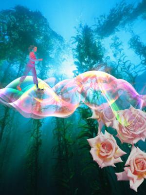 Chemin roses