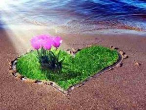 Coeur fleurs mer
