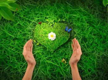 Coeur herbe