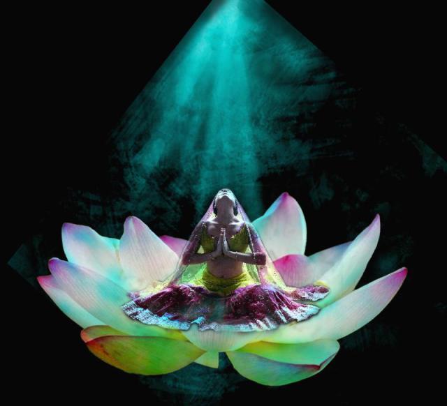 Communication spirituelle lotus