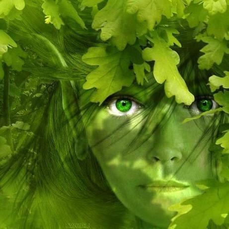 Communiquer esprit nature