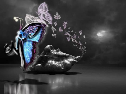 Coquillage et papillon