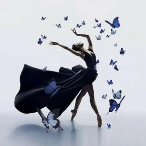 Danse papillons