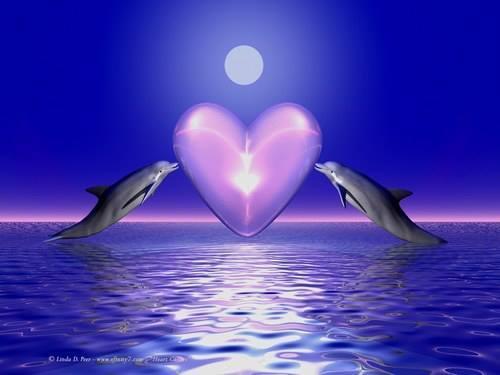 Reiki dauphin - Images coeur gratuites ...