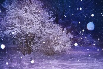 Decembre neige