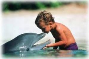 Enfant dauphin