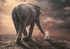 Enfant elephant