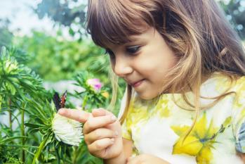 Enfant papillon dans ses mains