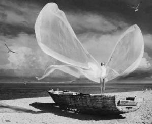 Envol du papillon humain