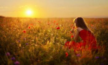 Femme champs de fleurs