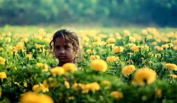 Fillette champs fleurs