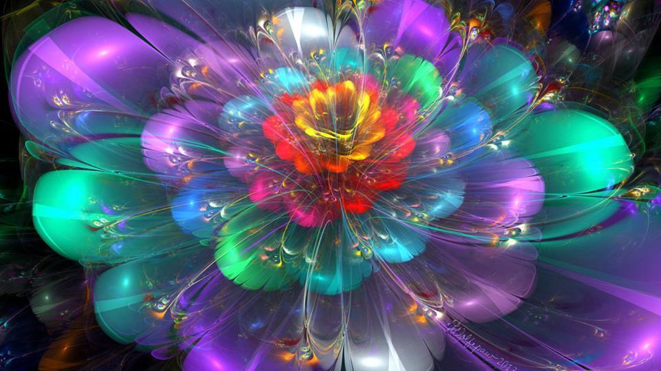 Fleur lumiere