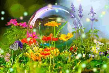 Fleurs bulle