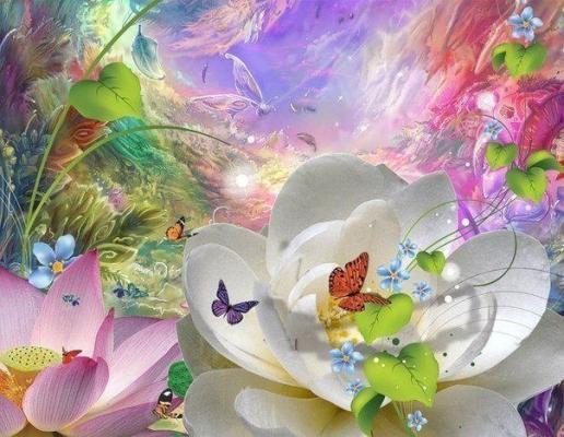 Harmonie papillons
