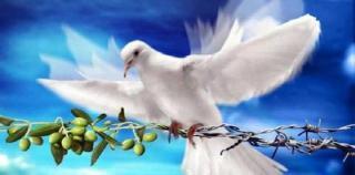 Image de paix