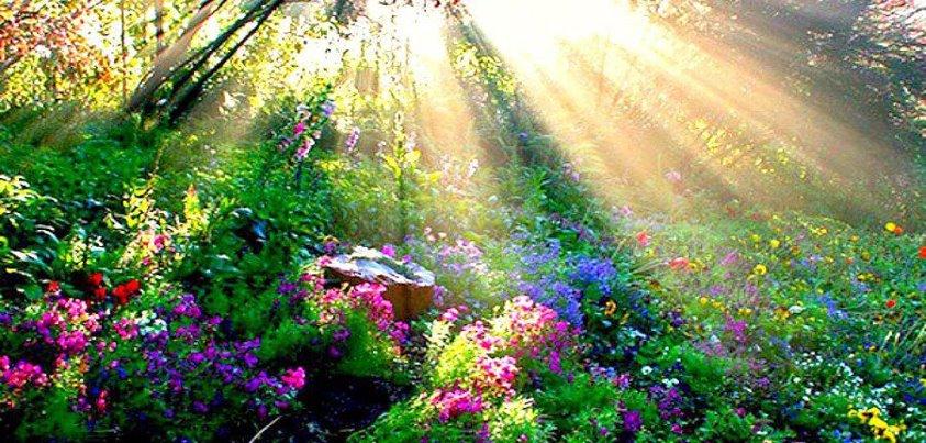 Jardin spirituel