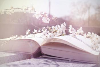 Livre pages fleurs