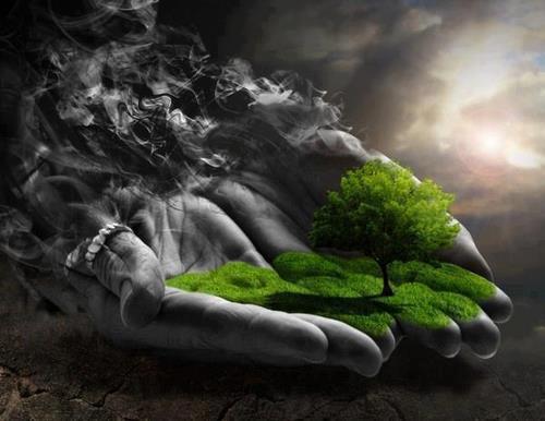 Mains arbre