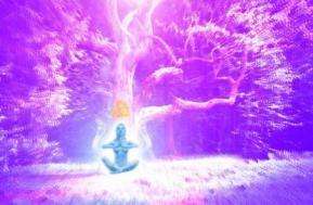 Meditation daniel atman