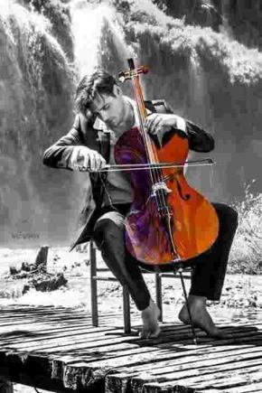 Musique homme violon