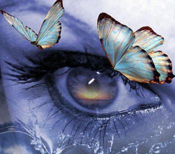 Oeil papillons