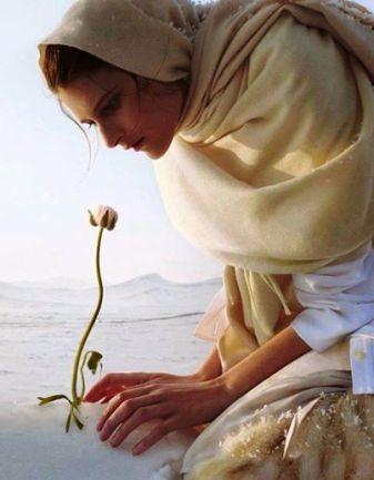 Paix fleur