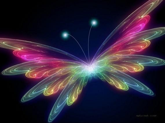 Papillon arc en ciel