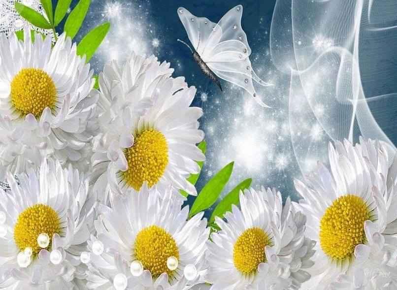Papillon fleur
