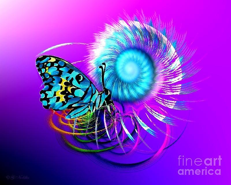 Papillon spirale