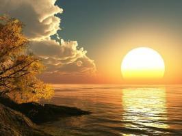 Pensee soleil