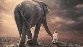 Petite fille avec un elephant