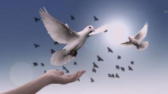 Rever de paix