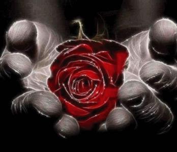 Rose dans main