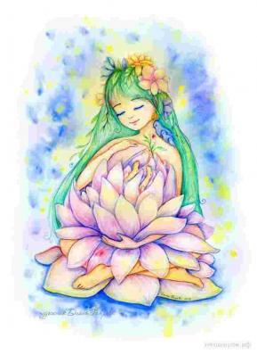 Serenite lotus