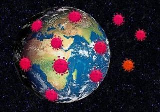 Terre virus