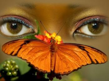 Yeux papillon