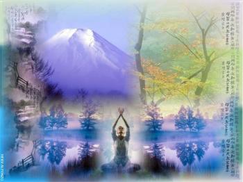 Zen by naveli