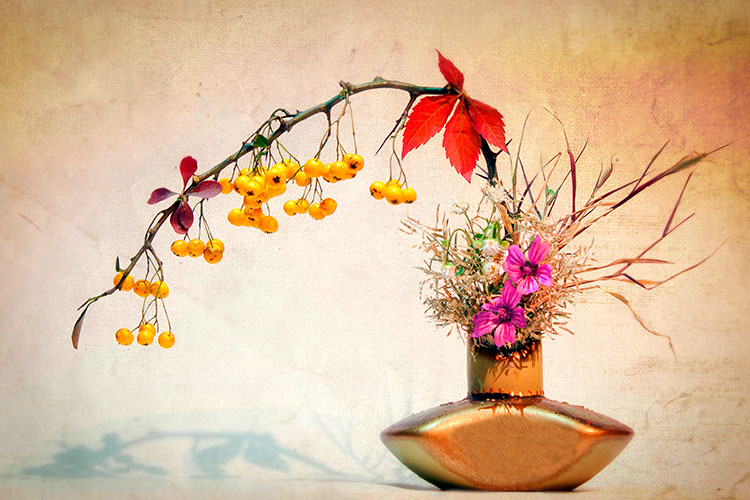 Zen fleurs
