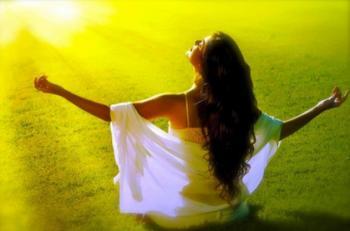 Zen soleil